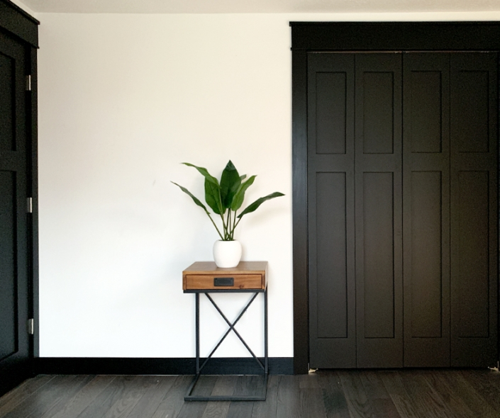 black trim door